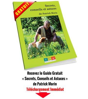 Patrick Morin Livret Gratuit